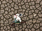 indian-drought